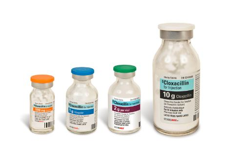 Cloxacillin family products